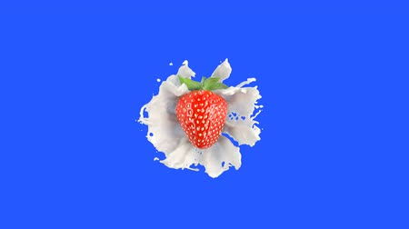 hdtv : Strawberry Falls into the Milk Splash on a Blue Screen