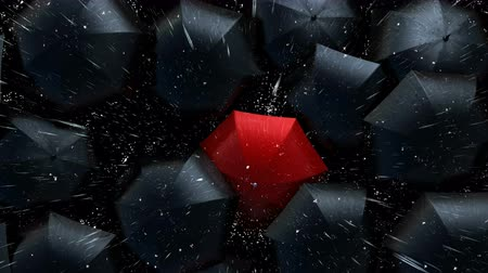 hdtv : Leader in the Crowd Concept, Red Umbrella Sneaks Up Against the Flow of Black Umbrellas. Beautiful 3d Animation, 4K Stock Footage
