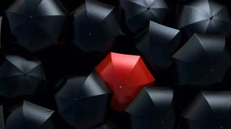 hdtv : Beautiful Standing Out from the Crowd Concept, Red Umbrella Wades Through a Flow of Black Umbrellas in the Thunderstorm. 3d Animation, 4K