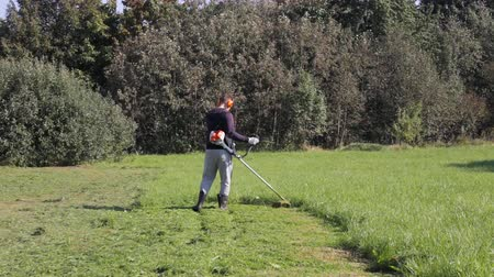 tondeuse a gazon : Adult man mows the grass