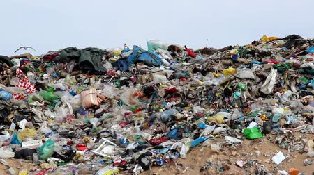 lixo : Trash on the landfill.