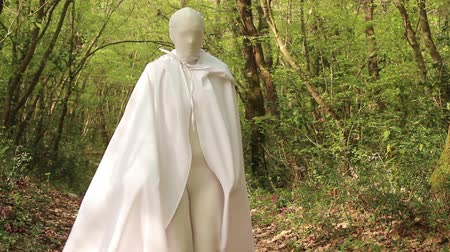 fantastický : Woman in white costume in the forest.