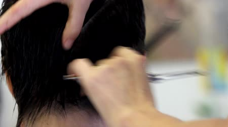 styliste : Hair stylist snijden womans haar. Stockvideo
