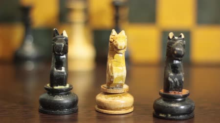 solicitor : WHITE CHESS HORSE FOR RENT BETWEEN BLACK CHESS HORSES