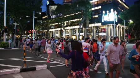 singaporean : SINGAPORE - CIRCA FEBRUARY, 2015: Crosswalk on Orchard Road in the evening. Orchard Road it is a huge tourist attraction, in addition to being the most popular shopping enclave in the city-state. Stock Footage