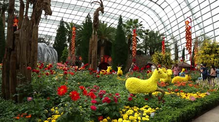 premier : SINGAPORE - JANUARY 27, 2015: The conservatory Flower Dome is located on the territory Park Gardens by the Bay. Park is intended to become Singapores premier urban outdoor recreation space.