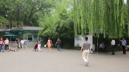 pekin : BEIJING - CIRCA JUNE, 2015: Visitors at the entrance to the cage with the giant panda at the Beijing Zoo. Beijing Zoo is basically wild and rare animals in China