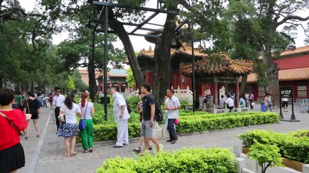 pekin : BEIJING - CIRCA JUNE , 2015: Visitors to the historic Jingshan Park in Beijing. This former imperial park covers an area of over 230 000 m2, now a public park. Stok Video