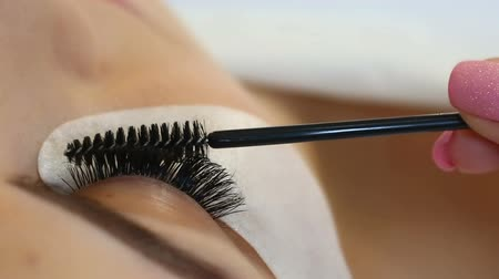 cílios : Eyelash Extension Procedure. Woman Eye with Long Eyelashes. Lashes, close up, macro, selective focus.
