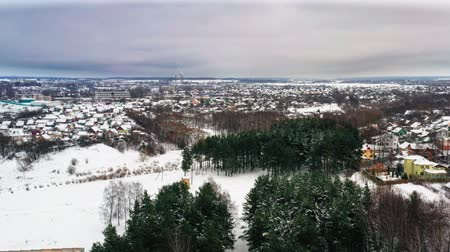 aerial view of snowy winter park. Pines and trees without leaves in the winter. Snowy park in the megapolis. Air view. Wideo