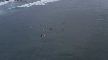An aerial view of surfers waiting for a wave in the ocean on a clear day. Aerial view of surfer on huge Indian ocean wave. Surfers on the beach top view Stock Footage