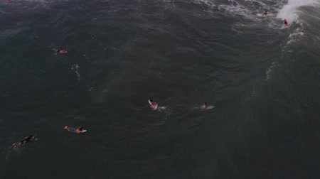 Aerial view of barrel wave in tropical ocean, Bali, group of surfers in the water.