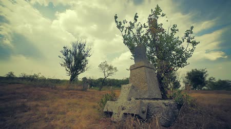 headstone : Tombstone and graves in an old cemetery Stock Footage