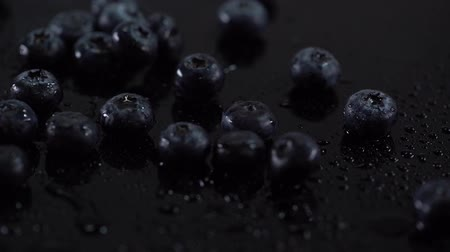 scatters : studio shoot of wet blueberries falling on black