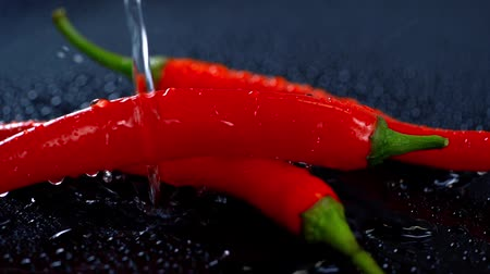 pimenta : studio shoot of red chili with water on dark surface