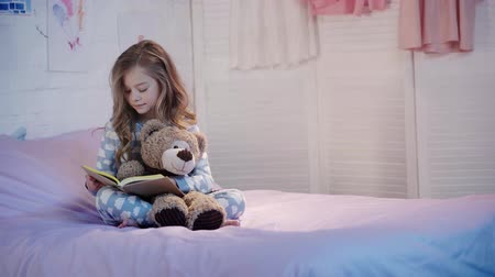oso de peluche : teddy bear Archivo de Video