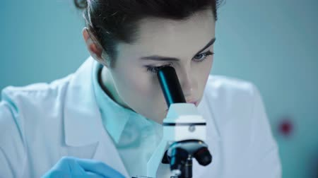 clínico : beautiful, attentive scientist looking in microscope while working in laboratory