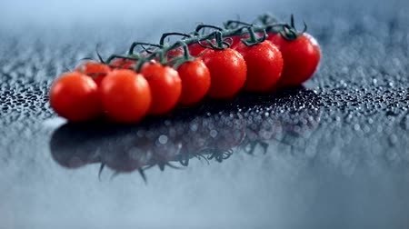 tomates cereja : selective focus of fresh cherry tomatoes on branch with sprinkling water