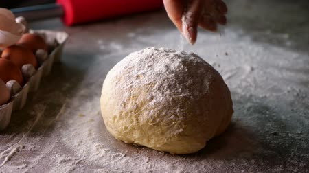 borrifar : Woman hand sprinkle flour on dough stroking the loaf to spread it evenly, preparing food with love - closeup, static camera Stock Footage