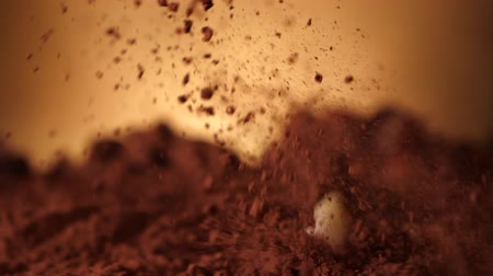 kernel : Peeled almonds splash into cocoa stirring up sweet dust - extreme close up, slow motion, camera follow Stock Footage