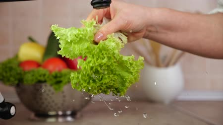 musluk : Woman hand shake water off dripping lettuce leaf at the kitchen sink - close up, slow motion