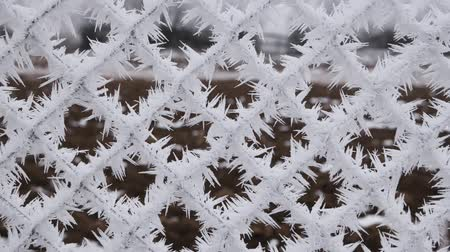 Metallic wire fence with hoarfrost shaking the icy crystals off to reveal barren cold winter landscape - static camera Stok Video