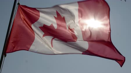 pro government : Canadian flag flying in slow motion and back lit by the sun. Stock Footage