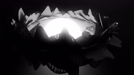bez szwu : Abstract animation of a glowing sphere surrounded by morphing petals.