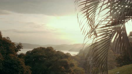 palmeira : Wide angle view of a tropical paradise framed by a palm tree. 4K UHD footage with high dynamic range.