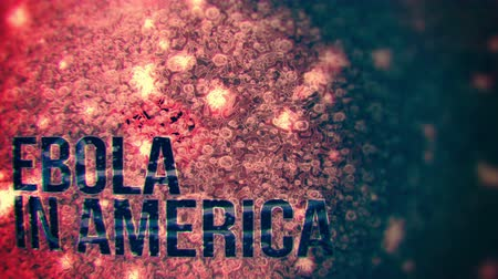 bez szwu : Ebola in America - seamless motion background suitable for news broadcasts. Wideo