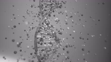 ingrandimento : 4K DNA Gene Editing Concept. Animazione 3D. Filmati Stock