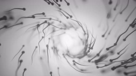 plemniki : 4K Sperm Swimming Towards Egg. Highly Realistic CGI. 3D animation.