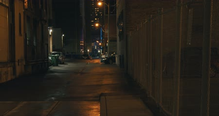 Establishing shot of a dark alleyway at night. Atmospheric 4K footage. Shot on a cinema camera in RAW. No discernible faces or logos.