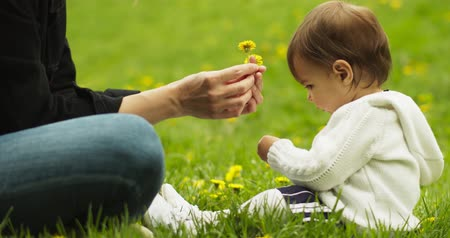 dech : Baby and her mother playing with dandelions in the park. Shot in 4K RAW. Dostupné videozáznamy