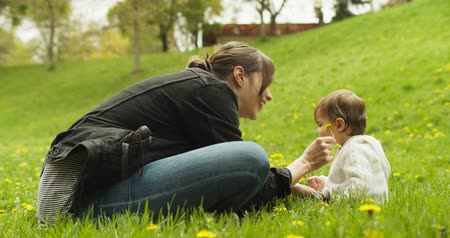 caring : Baby and her mother playing with dandelions in the park. Shot in 4K RAW. Stock Footage