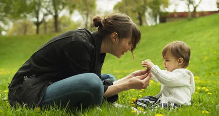 dmuchawiec : Baby and her mother playing with dandelions in the park. Shot in 4K RAW. Wideo