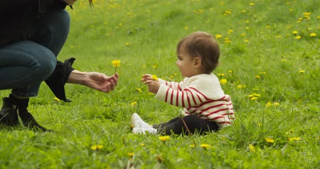 Baby and her mother playing with dandelions in the park. Shot in 4K RAW. Stock Footage
