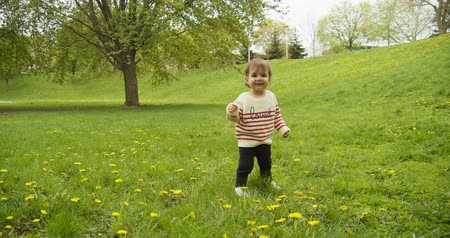 Cute baby girl playing with dandelions in the park. Shot in 4K RAW.