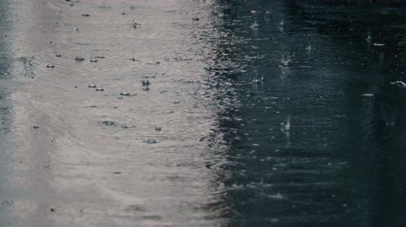 pogoda : 4K establishing shot of rain falling on pavement. Slow motion. Wideo