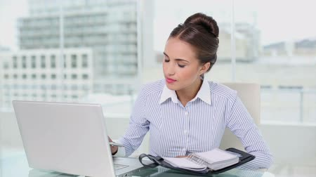 amarrado : Young businesswoman planning with laptop and diary in her office