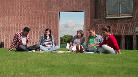 Students chatting together sitting outside on college campus
