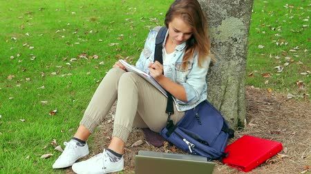 Student studying and leaning against a tree on college campus Vídeos
