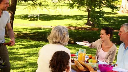 preparing : Happy family having a barbecue in the park together on a sunny day Stock Footage