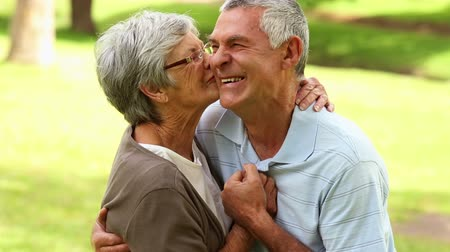 bochecha : Retired couple in the park hugging on a sunny day Stock Footage