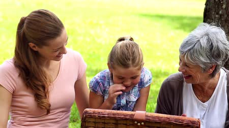 babcia : Three generations of women having a picnic on a sunny day Wideo