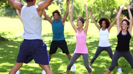 black : Fitness class doing jumping jacks in the park on a sunny day Stock Footage