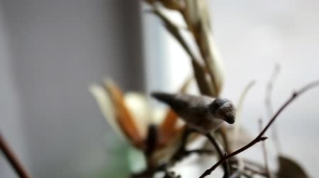 decor in a photo studio, bird on a branch, closeup