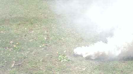 řev : smoke bomb in action on glade