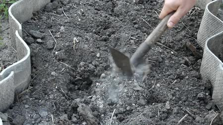 hacienda : Mens hands loosen the dry soil with a hoe and remove the pebbles Stock Footage