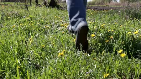 without face : mens legs run along the grass side of the tree Stock Footage